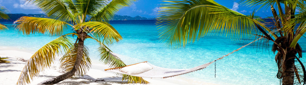 hammock-palm-tree-beach-tropical-climate-st.-john-virgin-islands-istock_000036157422_large-2 karibik