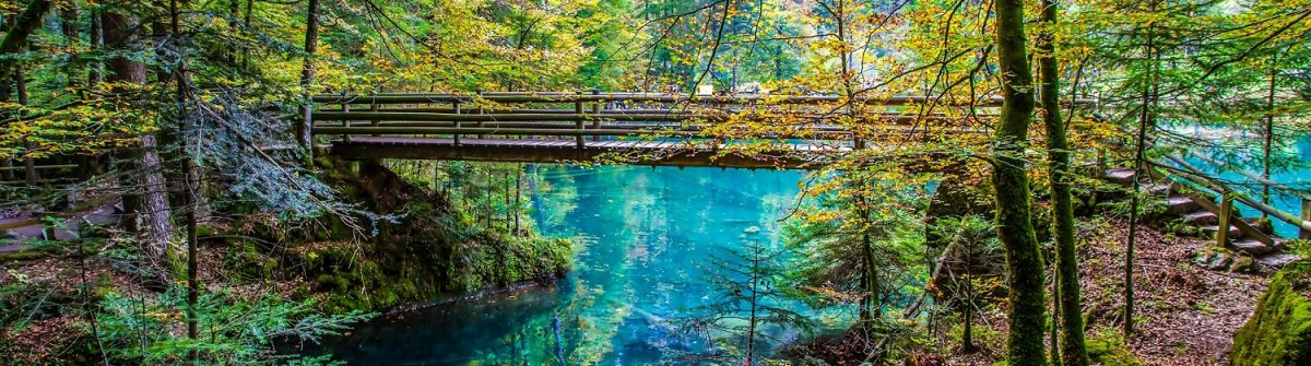 the-wooden-bridge-ar-blausee-blue-lake-in-early-autumn-kandersteg-switzerland-shutterstock_127215080-2