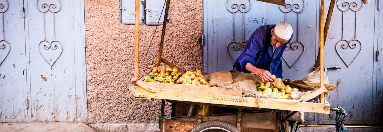 verkaeufer-von-prickly-pear-in-marrakesch-istock_000030524196_large-editorial-only-arge89-2