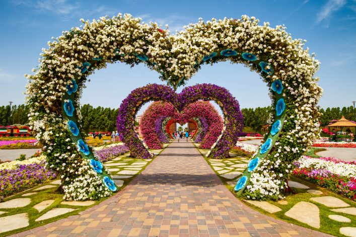 hearts-way-in-dubai-miracle-garden-shutterstock_269405375-editorial-only-rebius-2