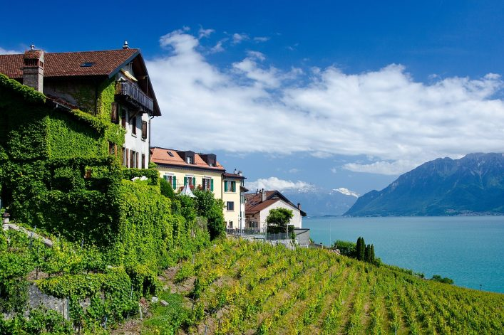 View-of-Lake-Geneva-from-Vevey-with-vineyard-in-the-foreground-and-mountains-in-the-background-shutterstock_1267615204