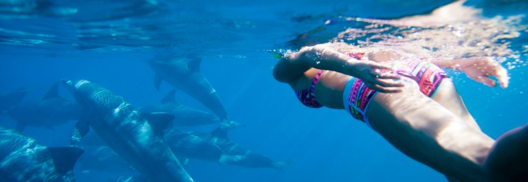 Swiming in the Indian ocean with dolphins