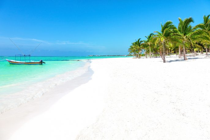 Stunning tropical beach with coconut palm and turquoise waters