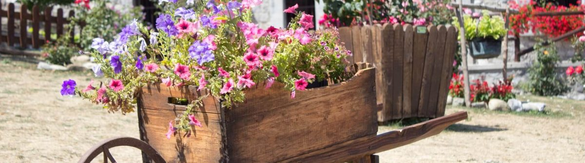 Agriturismo-with-flowers_shutterstock_1116794708_1920-1